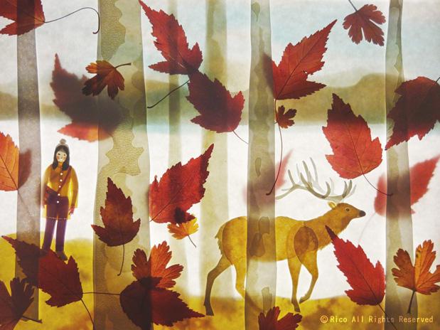 fall-elk